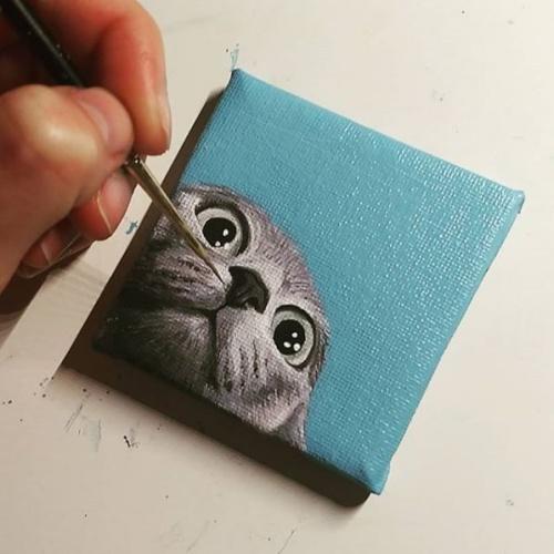 Nieuwsgierige kat schilderij op klein canvas - Dagdromen op Doek