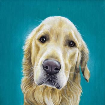 Portret Omer - acryl op doek, 20x20cm (2019)